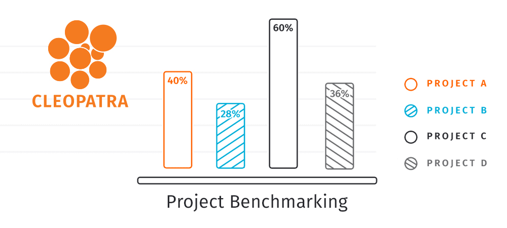 Managing project costs with metrics
